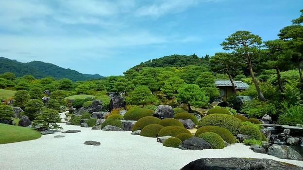 枯山水庭(1)