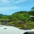 Photos: 枯山水庭(1)