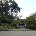 Photos: 三宝院庭園(5)