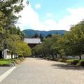 Photos: 桜馬場