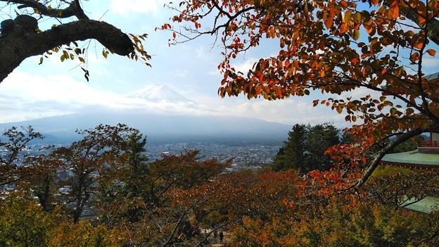 紅葉越しの富士山(3)