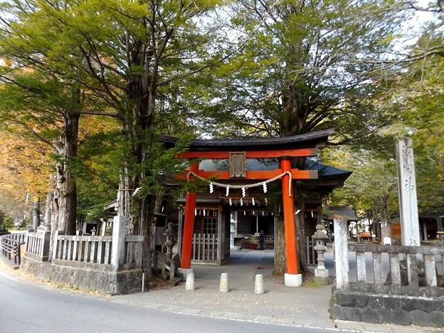浅間神社(忍草)1