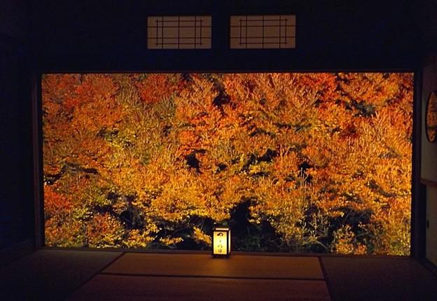 安國禅寺の紅葉(6)