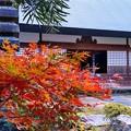 京丹波町・玉雲寺(8)