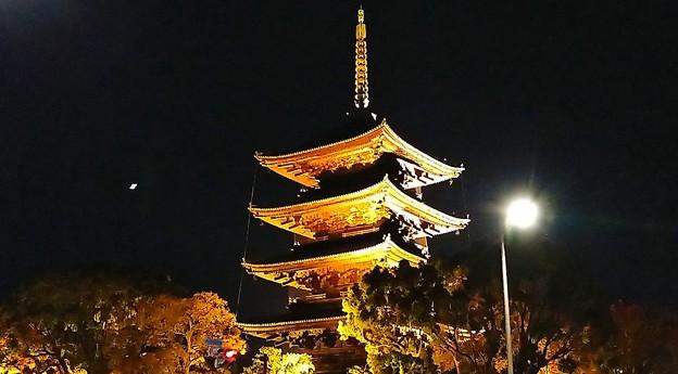東寺・五重塔ライトアップ(2)