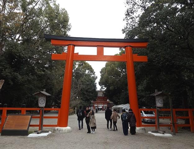 下鴨神社(1)