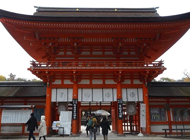 下鴨神社(2)