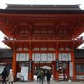 Photos: 下鴨神社(2)