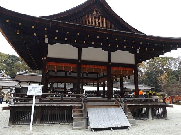 下鴨神社(3)