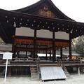 Photos: 下鴨神社(3)