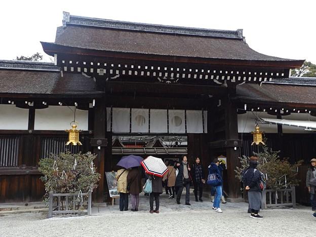 下鴨神社(4)