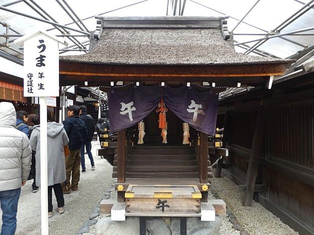 下鴨神社(5)