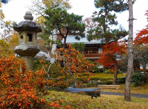 旧三井家下鴨別邸(5)