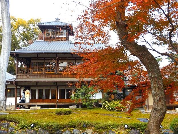 旧三井家下鴨別邸(6)