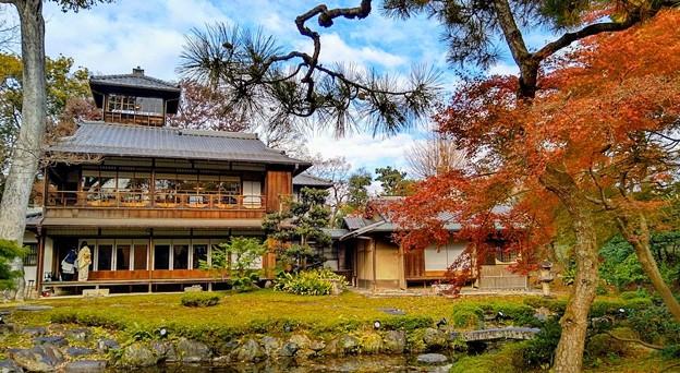旧三井家下鴨別邸(9)