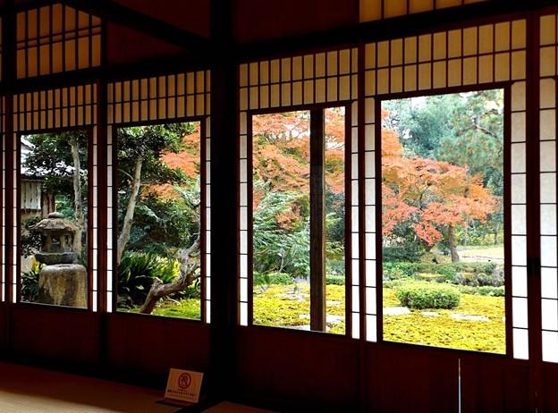 旧三井家下鴨別邸(10)