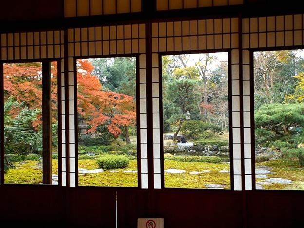 旧三井家下鴨別邸(11)