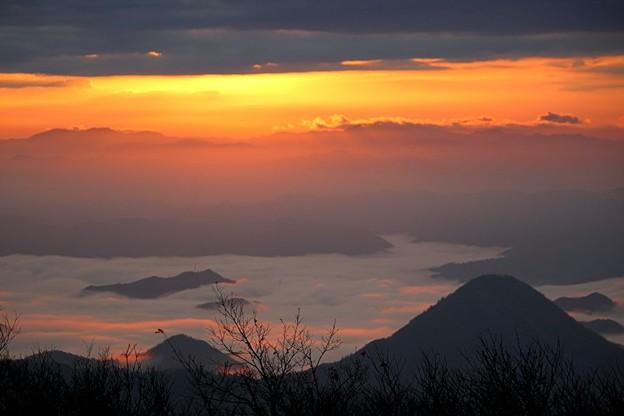 Photos: 朝焼けに染まる雲海~大江山~
