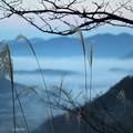 立雲峡から望む雲海(3)
