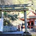 厳魂神社(奥社)(1)