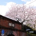 Photos: 蹴上インクライン(2)