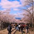 Photos: 蹴上インクライン(4)