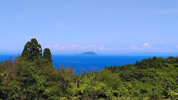空と海と新緑と