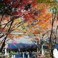 Photos: 丹波のもみじ寺 長安寺(2)