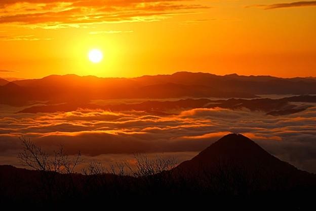 朝陽に染まる雲海