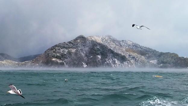 Photos: 厳冬の海