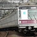写真: P3030002