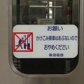 写真: P3050001