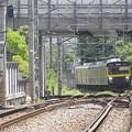 P4210025
