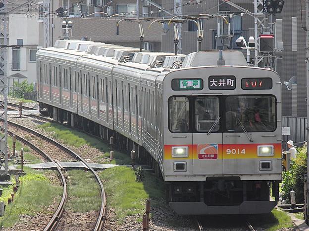 P6020014