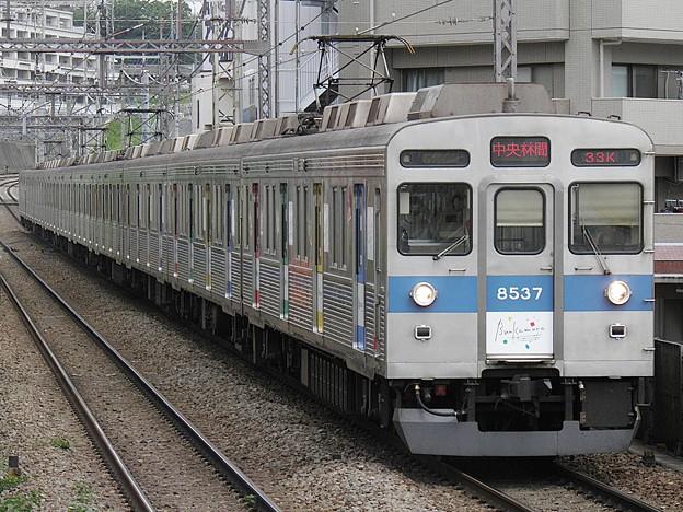 P5130038