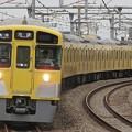 P7150032