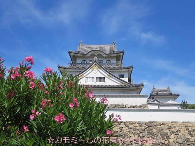 お城と夾竹桃