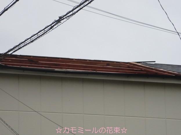 お隣さんの屋根(-_-;)