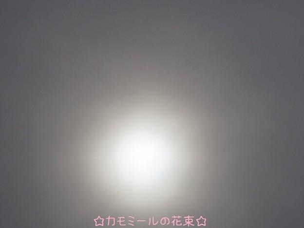 日蝕前に曇り始めました(-_-;)