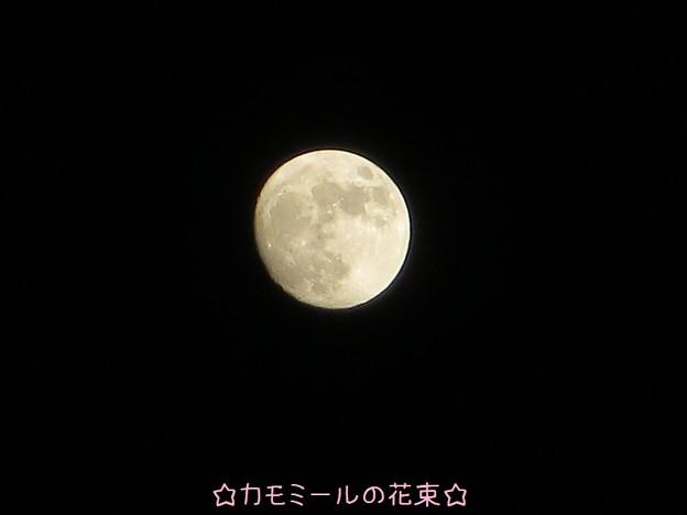 満月の二日前☆