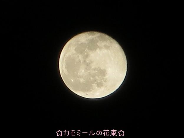 満月の翌日の月☆