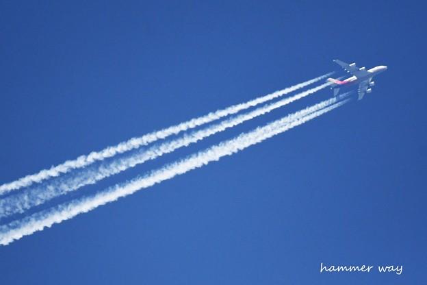 Photos: DSC_9771 (3)