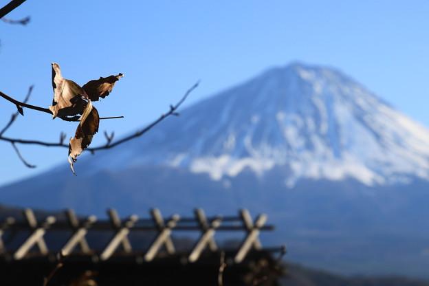 写真: 富士山 癒しの里根場 171203 03