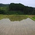 写真: 神子原の水田 180518 01