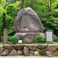 写真: 尾山神社 180518 05