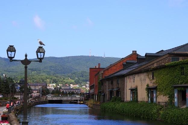 小樽運河 180801 01