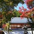 写真: 桐生 宝徳寺 181114 03