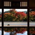写真: 桐生 宝徳寺 181114 04