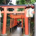 写真: 上野恩賜公園 181023 05