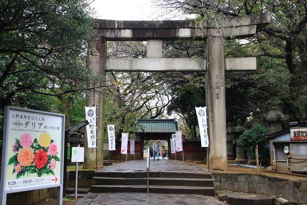 上野恩賜公園 181023 06